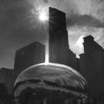 195-The Bean bw