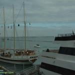 539-Navy Pier
