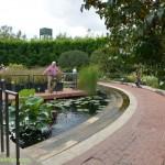584-Chicago Botanical Gardens