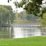 589-Chicago Botanical Gardens