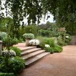 591-Chicago Botanical Gardens