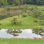603-Chicago Botanical Gardens