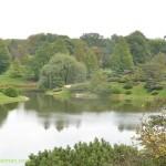 604-Chicago Botanical Gardens
