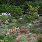 638-Chicago Botanical Gardens