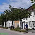 0339-Kristiansund walkabout