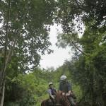 452-Punta Cana riding
