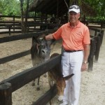 464-Punta Cana riding