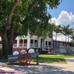 529-Nassau snaps